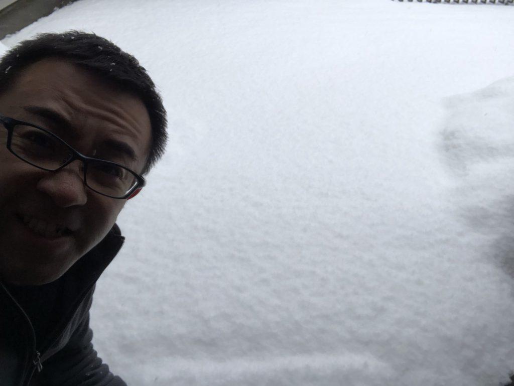 雪再び・・・ですが春の準備は進めていきましょう!